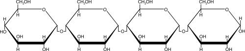 amido-polimero-del-glucosio Zuccheri o carboidrati o glicidi
